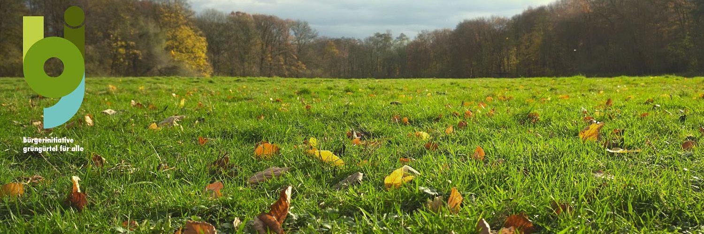 Herbst auf der Wiese