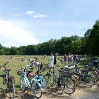 Fahrräder Picknick