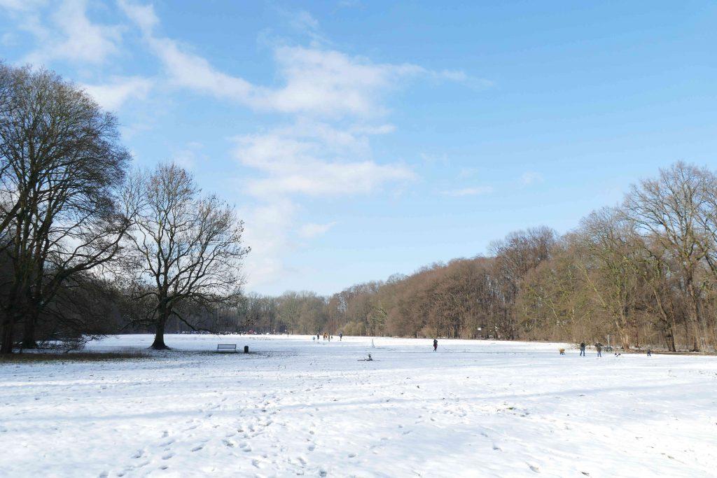 Winter auf der Wiese